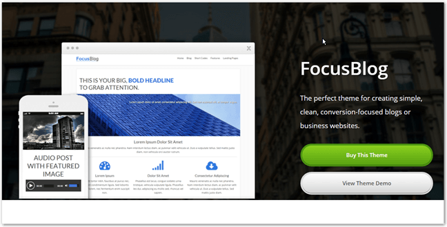 thrive themes focusblog theme review