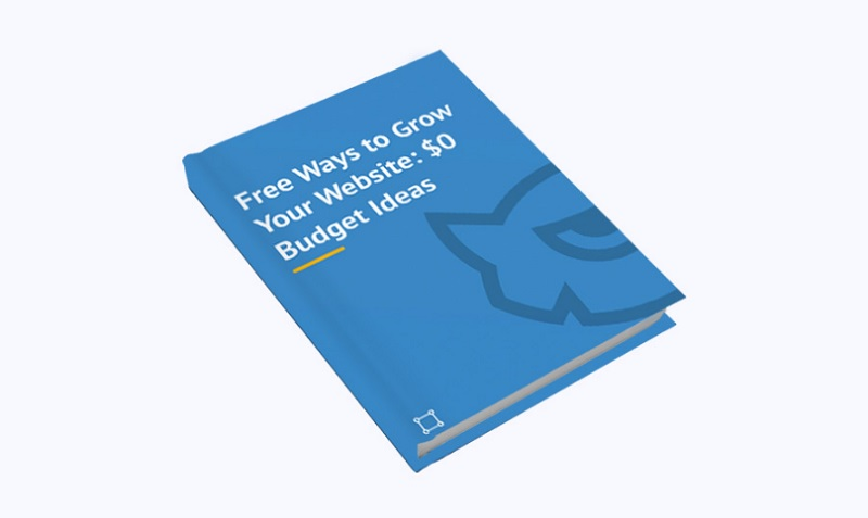 free-ways-to-grow-your-website-0-budget-ideas-free-ebook